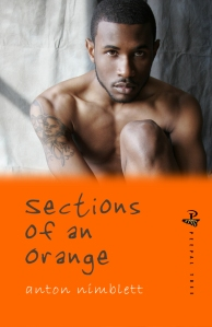 Sections_of_an_orange_front_cover(2)